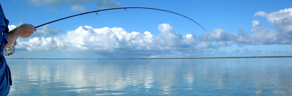 Turks and Caicos bonefishing on the flats