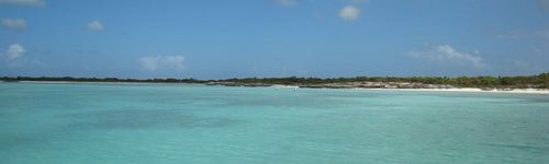 Fishing the flats on Providenciales Turks and Caicos Islands