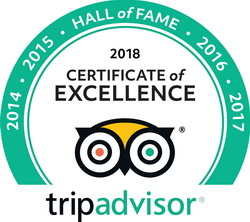 Hall of fame Trip Advisor certificate of excellence for Harbour Club Villas and Marina
