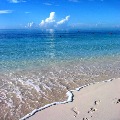 Grace Bay beach on Providenciales Turks and Caicos Islands