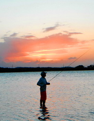 Bonefishing in Flamingo Lake infront of Harbour Club Villas in the Turks and Caicos Islands