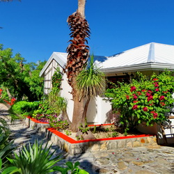 Enjoy cottages and gazebo by the pool with BBQ for guests to use grilling freshly caught fish