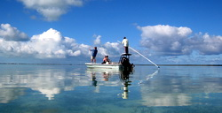 Bonefishing on the flats of Providenciales Turks and Caicos Islands
