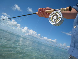 Rod and reel at the ready for bonefish
